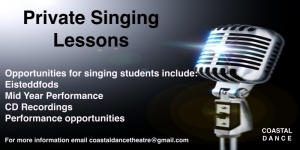 Singing flyer